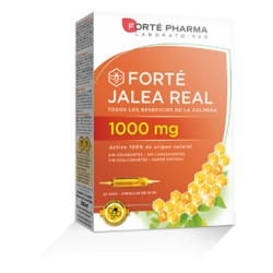 FORTE JALEA REAL 1000MG 20 AMPOLLAS